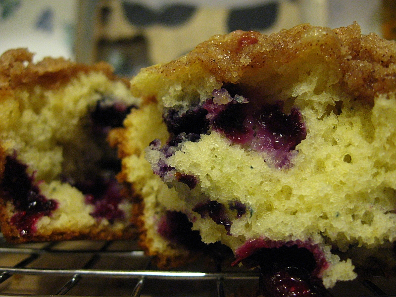 Big Beautiful Blueberry Muffins - A Hen's Nest - NW PA Mom Blog