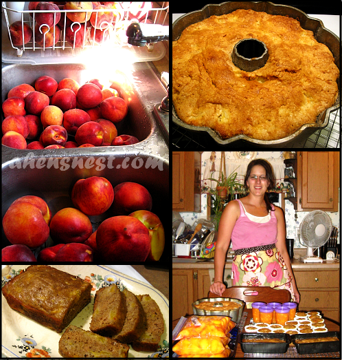 Peach Muffin Recipe
