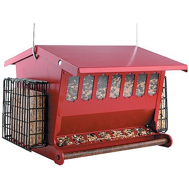 bird feeder
