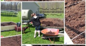 Filling our raised bed gardens with horse manure