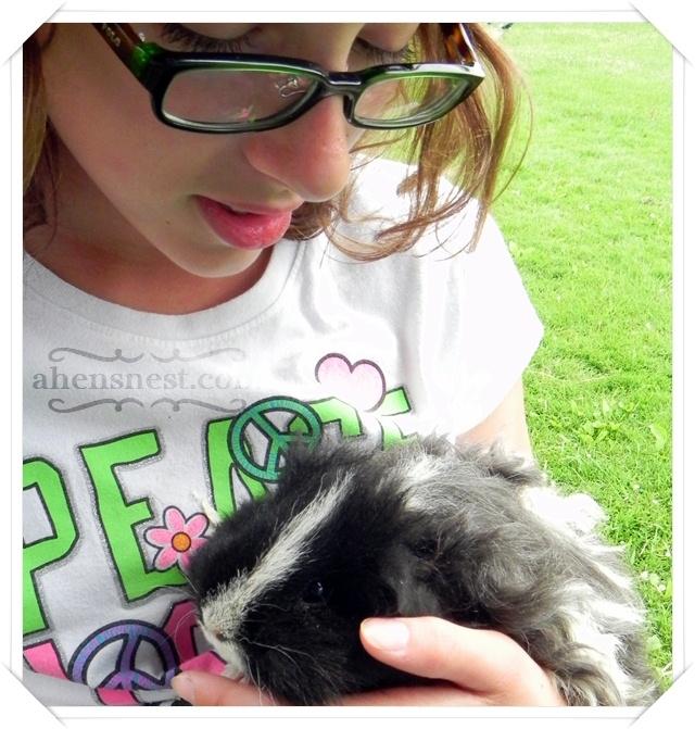 holding a guinea pig