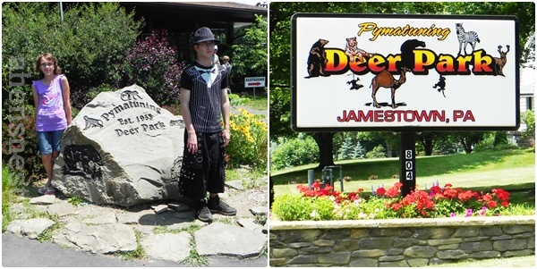 family outing to Deer Park Jamestown, Pa