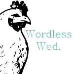 Wordless Wednesday – What's Up?