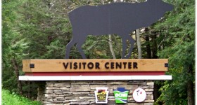 Family Road Trip to the elk capital of Pennsylvania