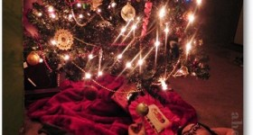 Random thoughts about my Christmas Tree – {almost} Wordless Wednesday