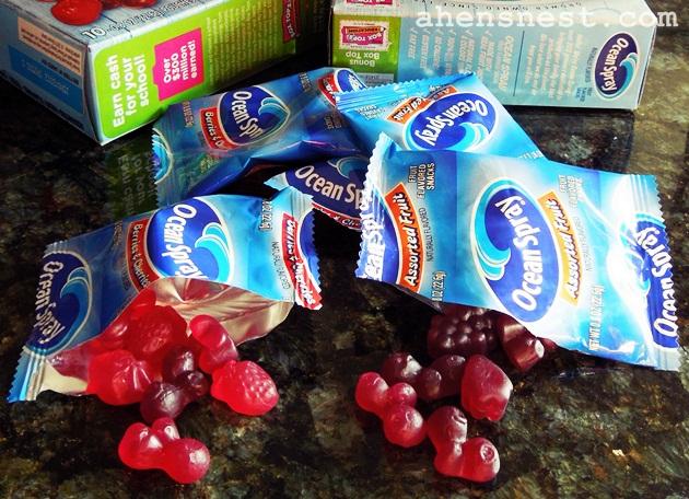 ocean spray fruit snacks