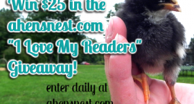 Win $25 PayPal or Amazon.com – love my readers #giveaway