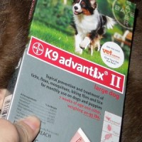 K9 Advantix II dogs