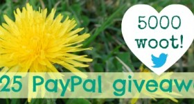 Hey! I made it to 5000 Twitter followers $25 PayPal #giveaway!