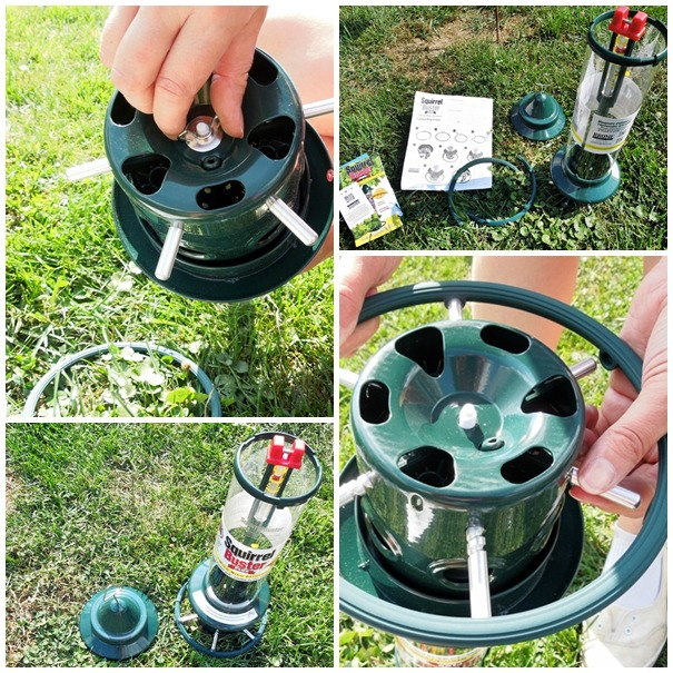 assembling the squirrel buster feeder