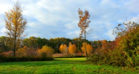 {almost} Wordless Wednesday – Autumn Phone Photography #FallInPA #VZWSM