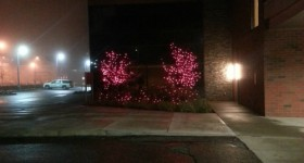 pink lights at the womens hospital