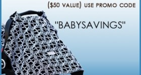 Baby Freebies! Get a free carseat canopy, sling and nursing cover!