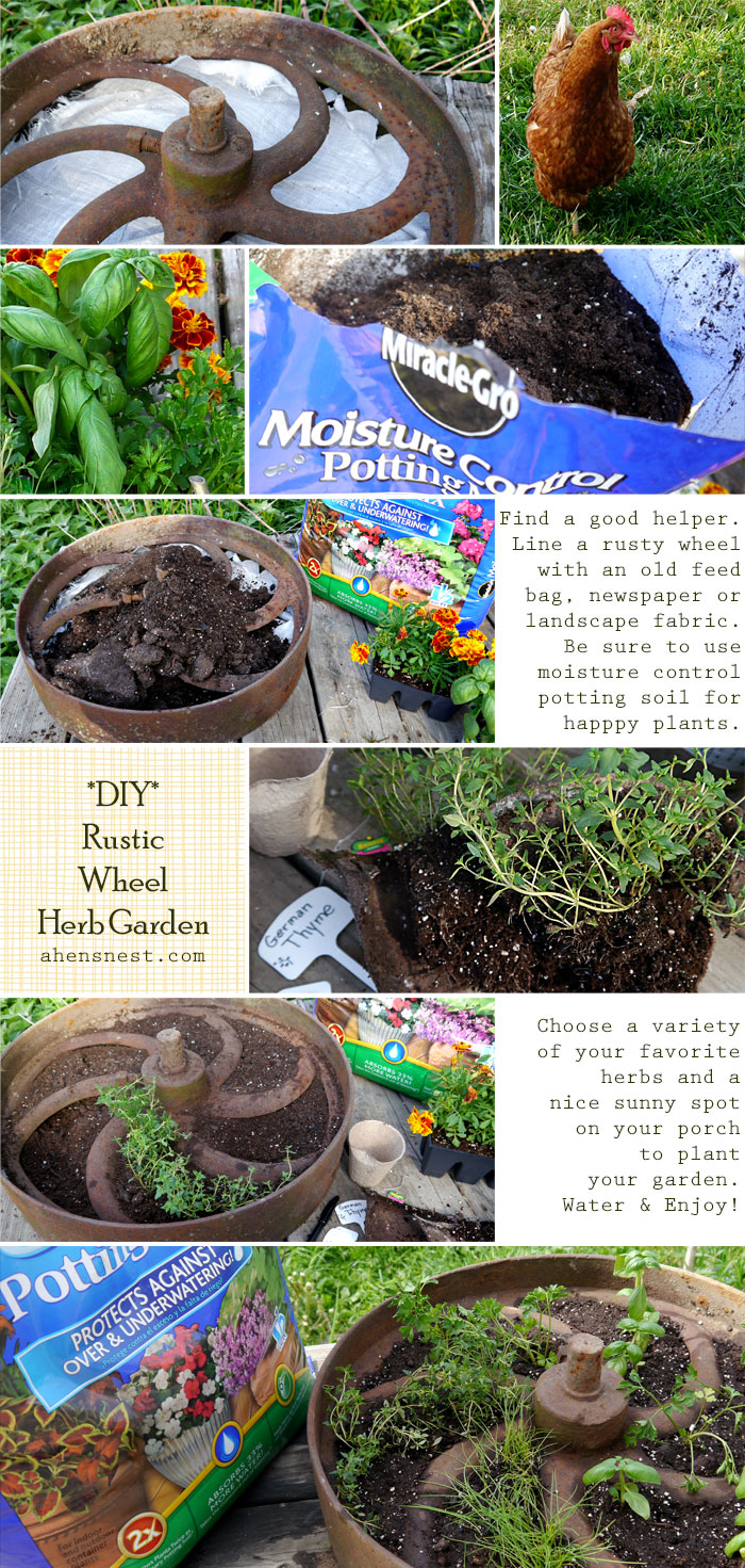 DIY Herb Container Garden Tutorial