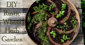 DIY Rustic Wheel Herb Garden How-To #MiracleGroProject