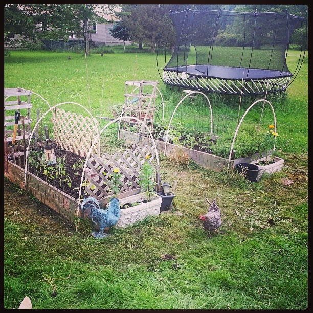 almost} Wordless Wednesday - Hillbilly Raised Bed #ww - A Hen\'s Nest ...