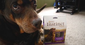 Holiday Gift Guide: Nature's Variety Instinct Dog Treats #giftguide