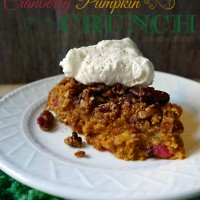 cranberry-pumpkin-crunch-whipped-cream-dessert