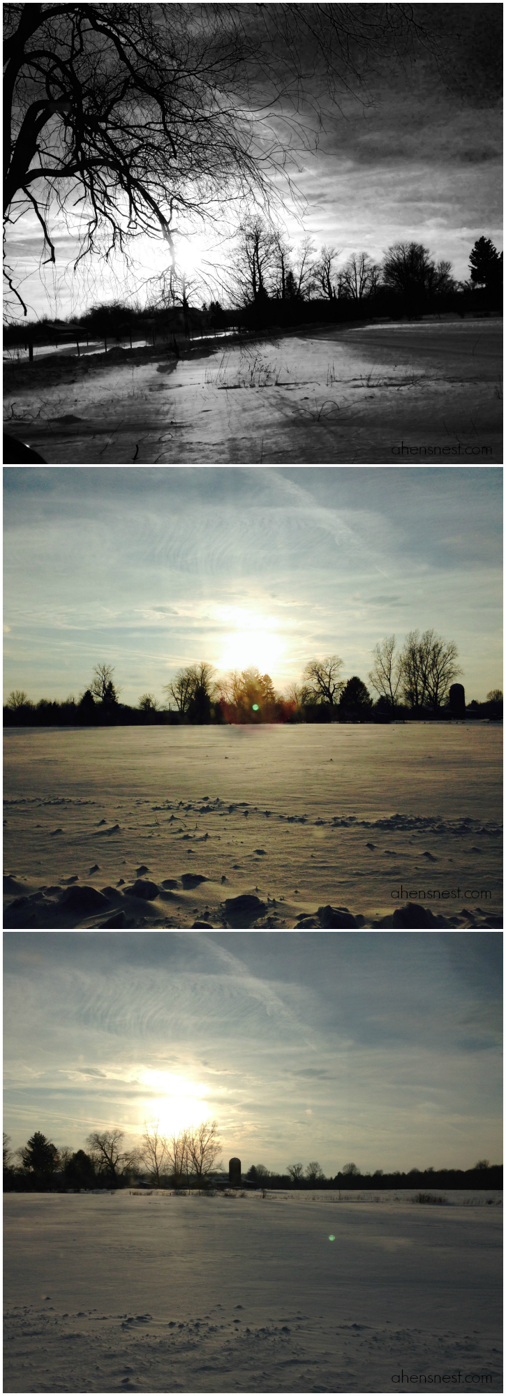 Winter-Landscape-Collage-Northwest-Pennsylvania-snow-2014