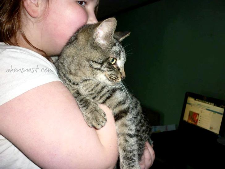 Steve-the-cat-snugglebug