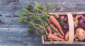 How To Grow Your Garden On A Budget