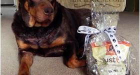 Nutrish Just 6 dry dog food