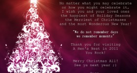 2011 Merry Christmas