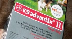 K9 Advantix II dogs