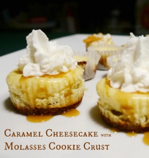 caramel cheesecake with molasses cookie crust