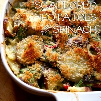 scalloped potatoes spinach lactaid recipe