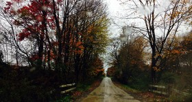 oct23-2013 autumn foliage NW PA dirt road
