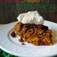 cranberry-pumpkin-crunch-whipped-cream-dessert